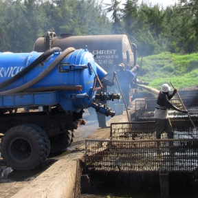 Global success new online course on Faecal Sludge Management
